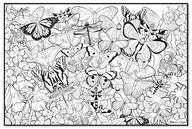 Jumbo Colour-In Poster - Butterflies