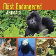 The Most Endangered Animals in the World (First Facts: All about Animals)