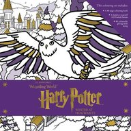 Harry Potter : Winter At Hogwarts : A Magical Colouring Set