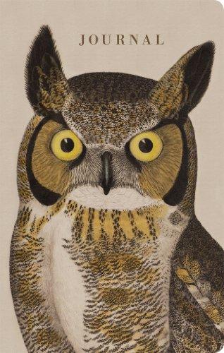 Natural Histories Journal: Owl