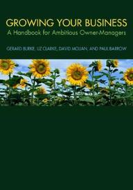 Growing Your Business: A Handbook For Ambitious Owner-Managers