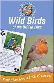 52 Wild Birds