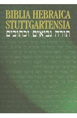 Hebrew Bible-FL