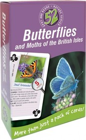 52 Butterflies and Moths