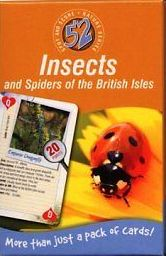 52 Insects and Spiders