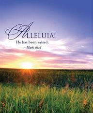 Alleluia! Easter Sunrise Bulletin 2013, Large (Package of 50)