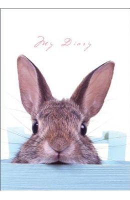 Sneaky Bunny [With Lock, 2 Keys]