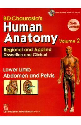 Human Anatomy Vol 2 Lower Limb & Abdomen & Pelvis W/Cd
