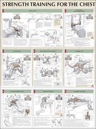 Buy Strength Training Anatomy: Strength Training For The Chest ...