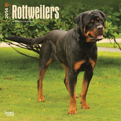 Rottweilers Calendar