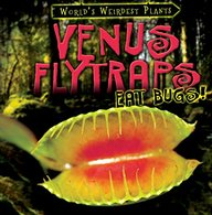 Venus Flytraps Eat Bugs! (World's Weirdest Plants)