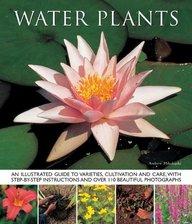 Watter Plants