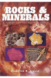 Rocks & Minerals A Portrait Of The Natural World
