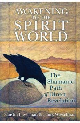 Awakening to the Spirit World: The Shamanic Path of Direct Revelation [With CDROM]