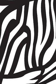 Zebra Small Wiro Bound Book
