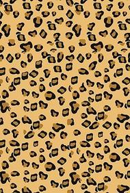 Cheetah Small Wiro Bound Book