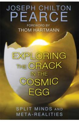 Exploring The Crack In The Cosmic Egg : Split Minds & Meta Realities