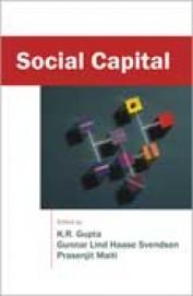 Social Capital Vol 1