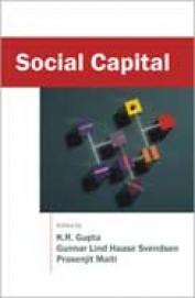 Social Capital Vol 2