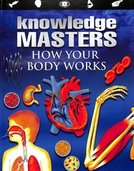 Knowledge Masters How Your Body Works