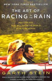 Art Of Racing In The Rain Film Tie
