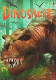Usborne Discovery: Dinosaurs