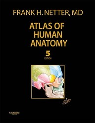 Atlas Of Human Anatomy, Professional Edition (Netter Clinical Science)