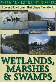 Physical Geography Ii: Wetlands, Marshes & Swamps: Science