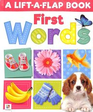 A Lift A Flap Book First Words