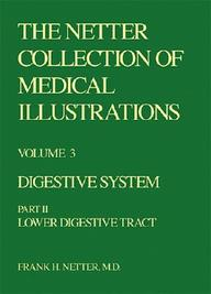 Digestive System: Lower Digestive Tract (Netter Collection Of Medical Illustrations, Volume 3, Part 2)
