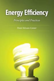 Energy Efficiency : Principles And Practices