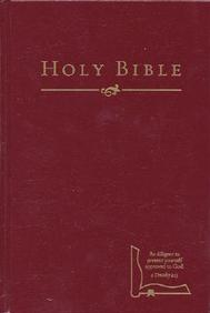 Hcsb Drill Bible (Small Edition, Burgundy Hardcover)