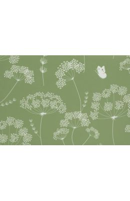 Queen Anne's Lace Note Cards [With Envelopes]