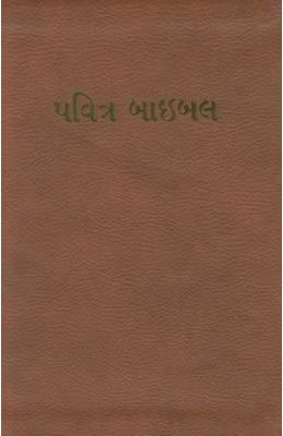 Gujarati Bible-FL-Easy-To-Read