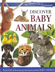Wonders Of Learning Discover Baby Animals