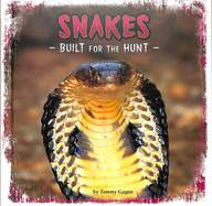 Snakes : Build For The Hunt