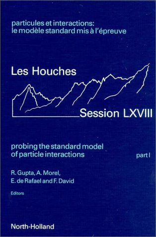Probing The Standard Model Of Particle Interactions (Les Houches Summer School Proceedings)