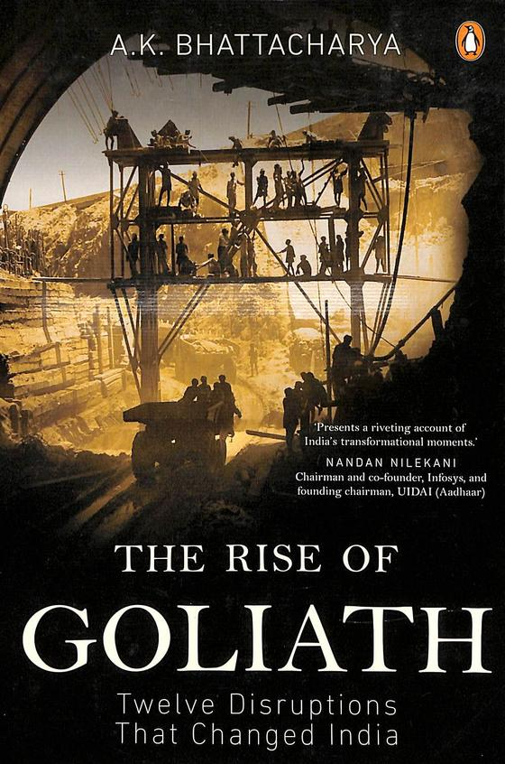 Rise Of Goliath : Twelve Disruptions That Changed India