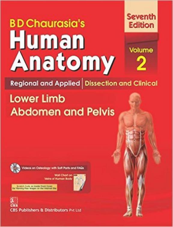Human Anatomy : Lower Limb Abdomen  & Pelvis Volume 2