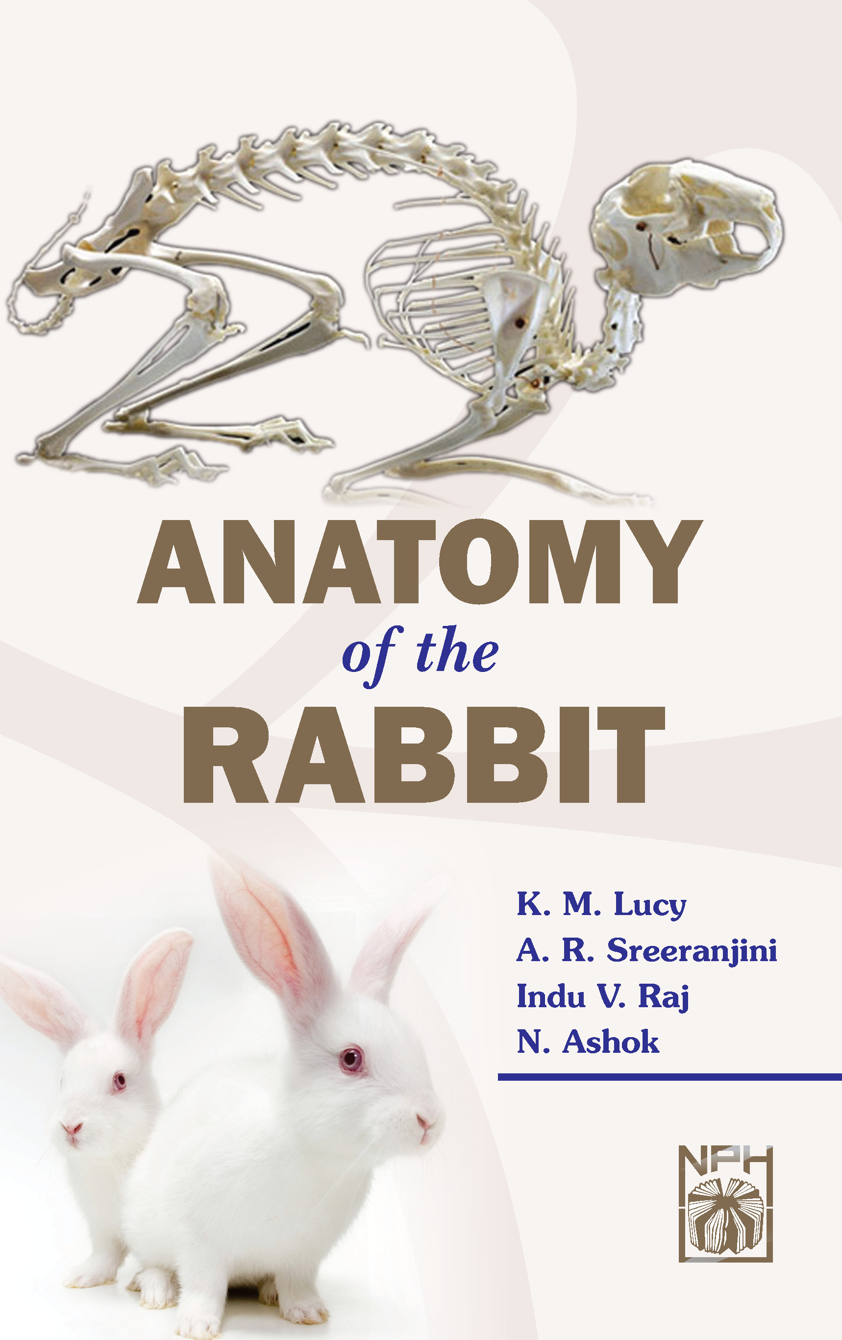 Buy Anatomy Of The Rabbit Book Km Lucyar Sreeranjiniindu V Raj