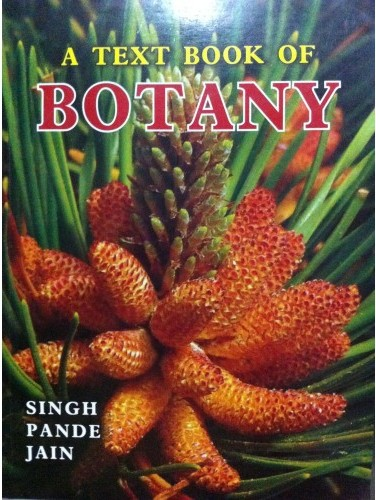 buy textbook of botany book v singh pc pande dk jain 8171339816
